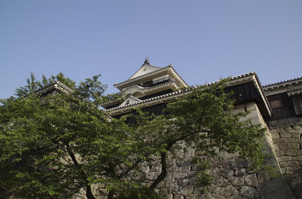 愛媛県の松山城