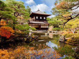 11月社員旅行にオススメは京都