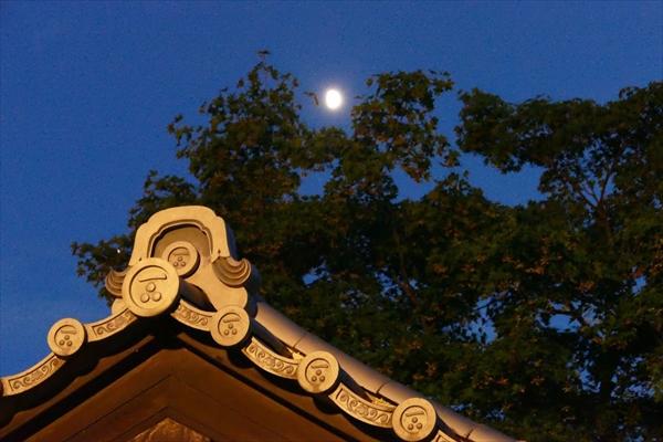 社内イベント_坐禅_夜空の坐禅_京都