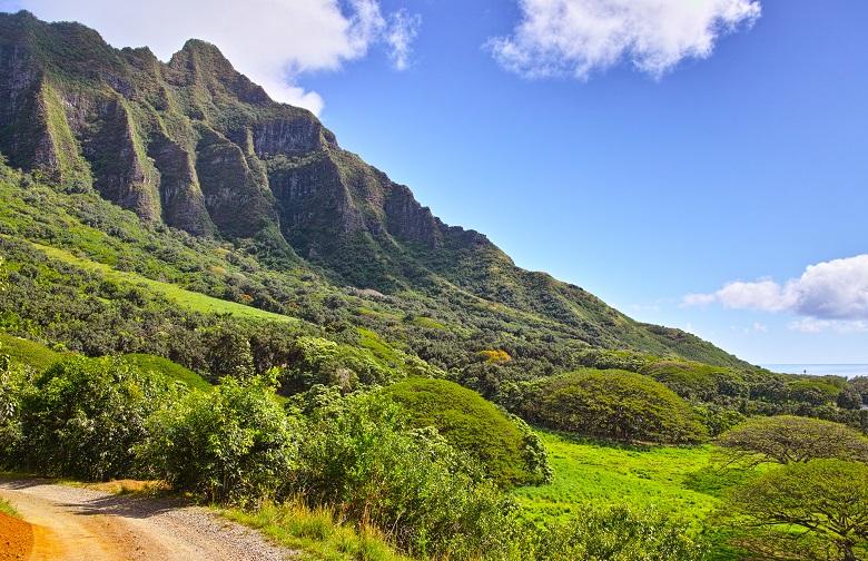 ハワイ人気のテーマパーククアロアランチ