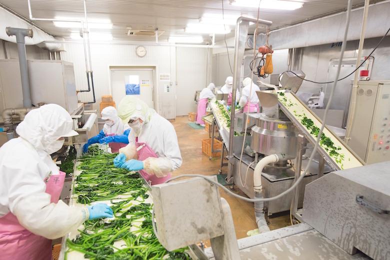 和郷の工場